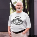 BEST PAPA IN THE WORLD T-shirt